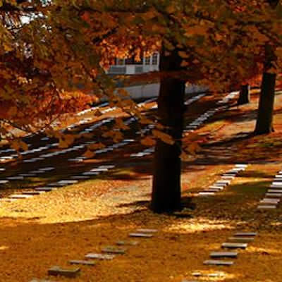 Autumn-Cemetery-copy